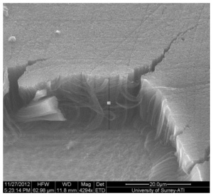 The coating consists of vertically aligned carbon nanotubes which can be seen in this scanning electron microscope image.