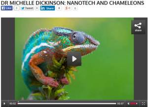 Click here to listen to my Radio Live Chat about nanotechnology and chameleons