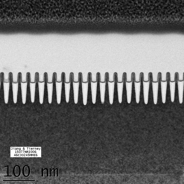 The transistors showing a a 30nm pitch which is the distance between the front edge of one transistor and the front edge of the next transistor. (Image source IBM)