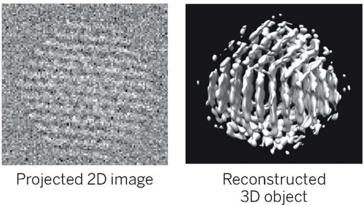 2D image electron microscope image (left) used to create 3D structure image (right). Image modified from original source
